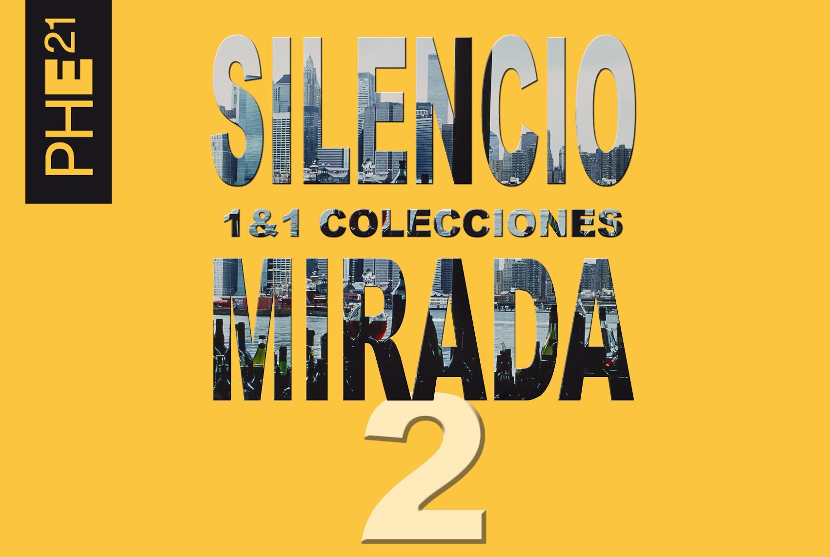 Colecciones 1 & 1 / Silencio y mirada 2